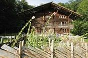 Gelebte Schweizer Traditionen im Freilichtmuseum Ballenberg