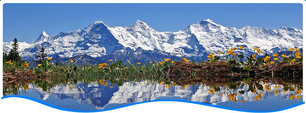 Wundervolle Jungfrauregion im Herzen des Berner Oberlandes!